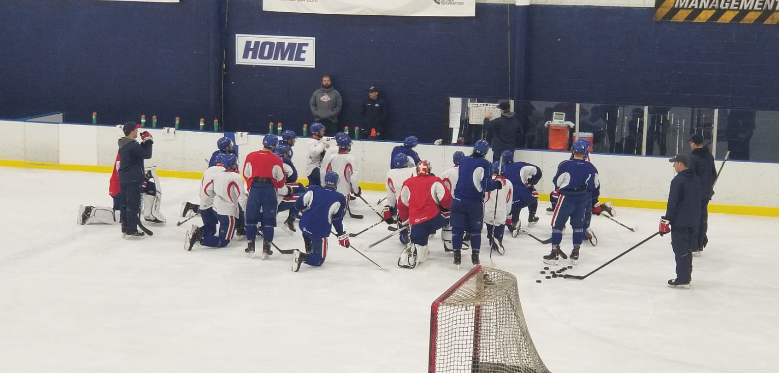 Amerks Injury Updates, Luukkonen Plan, Standings, and Stats