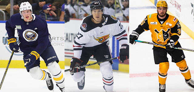 Amerks add three players on professional tryouts